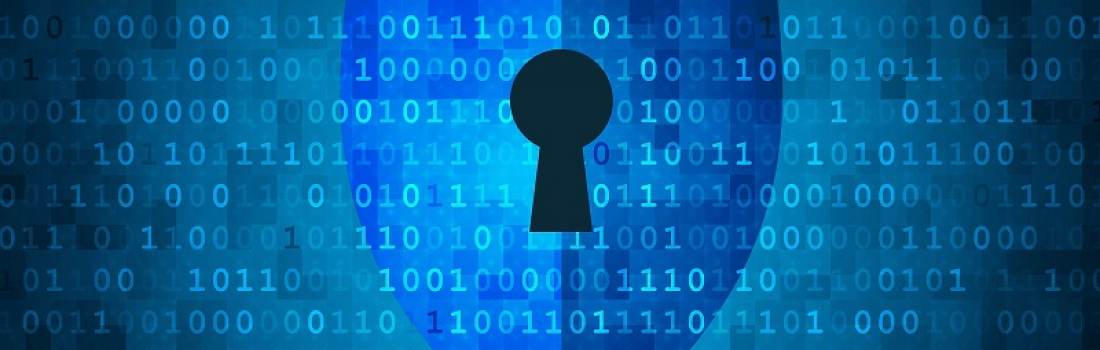 Addressing a Critical Data Protection Gap with Dynamic Data Masking